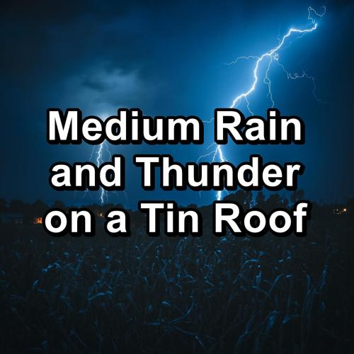 Nature and Rain, Meditation Rain Sounds, Relaxing Rain Sounds - Soft Rain and Thunder Storm To Loop for 10 Hours  (2020)
