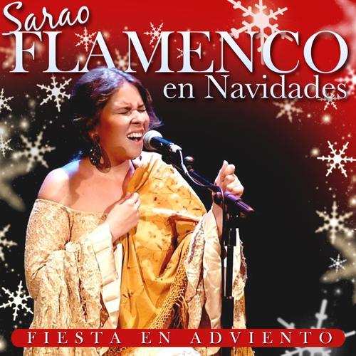 Peña de Flamenco Villancicos y a Cantar - Viva el Amor  (2012)