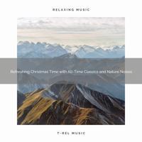 Sound Sleeping - Live Christmas Time with Top Carols and Bird Calls