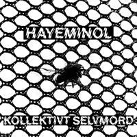Hayeminol - Gingerbread