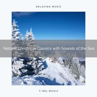 Water Soundscapes - Perfect Christmas Songs with Sea