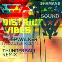 Shamans of Sound - Wild Step Riddim (Instrumental Mix)
