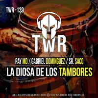 Ray MD - La Diosa De Los Tambores (ORIGINAL MIX)