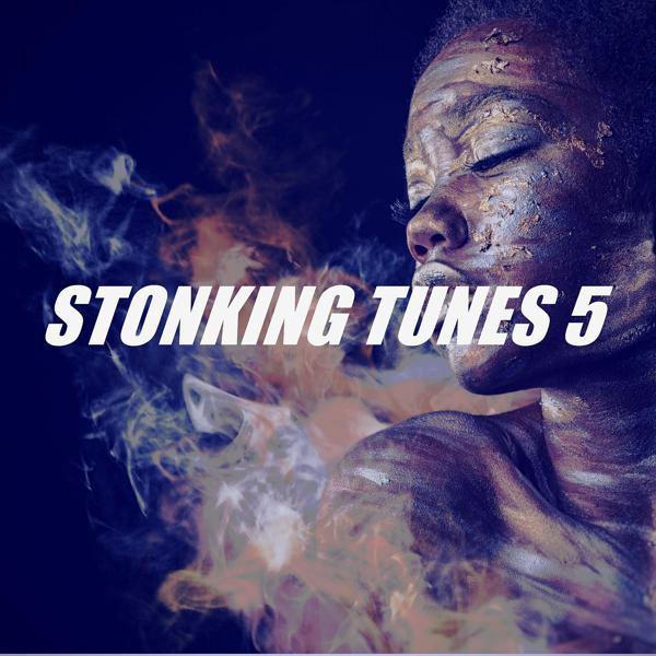 Альбом: STONKING TUNES 5