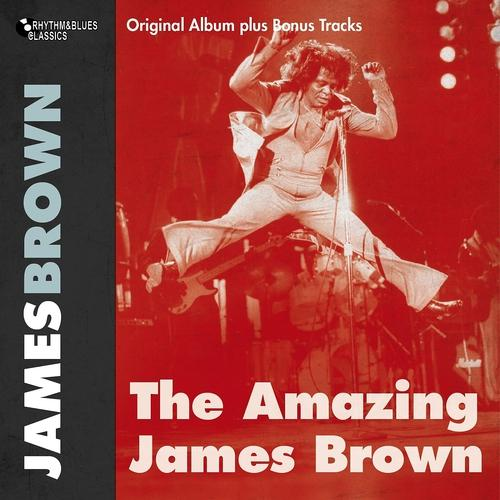 James Brown, His Famous Flames - Lost Someone  (2012)