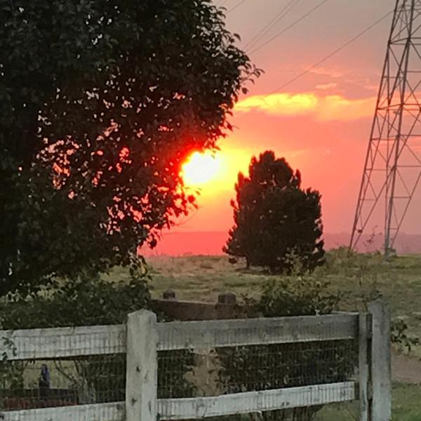 Альбом: Colorado Sun - Electric re-master