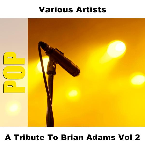 Альбом: A Tribute To Brian Adams Vol 2