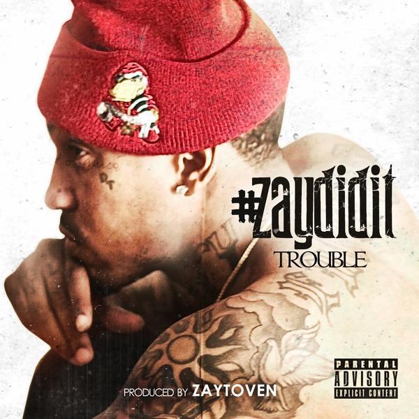 Альбом: #ZayDidIt
