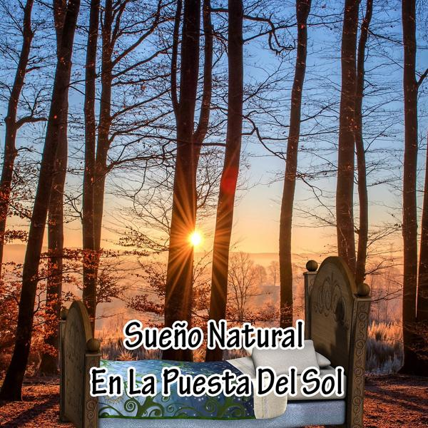 Альбом: Sueño Natural En La Puesta Del Sol