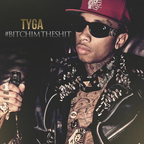 Tyga, Gudda Gudda, 2 Chainz - Bad Bitches (feat. Gudda Gudda, 2 Chainz) [Remix]  (2014)